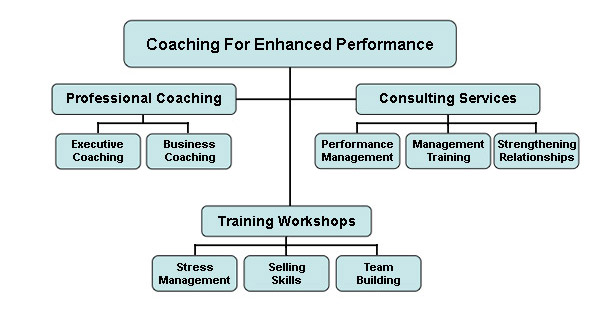Coaching For Enhanced Performance Services Flowchart